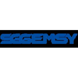SGGEMSY.KZ